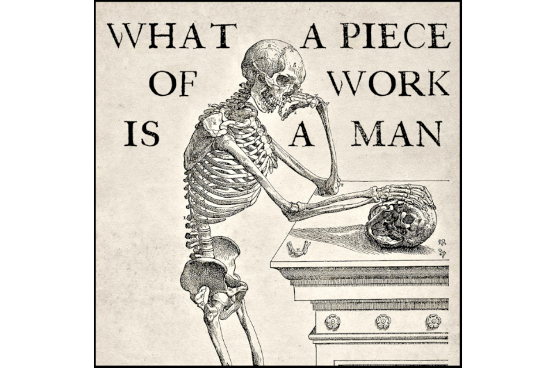 What a piece of work is a man